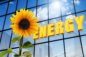 Sharing Is Caring Why Community Solar Projects Are Revolutionizing The Energy Game 300x199